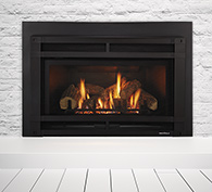 Fireplaces Insert 04